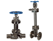 C Series Cryogenic Bellows Seal Globe Valve